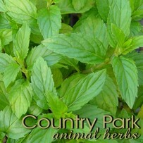 Country Park Peppermint Leaves 1kg