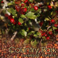 Country Park Hawthorn Berries 1kg