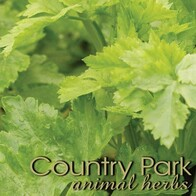 Country Park Celery Seed 1kg
