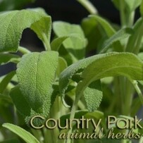 Country Park Sage leaf 1kg