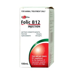 Value Plus Folic B12